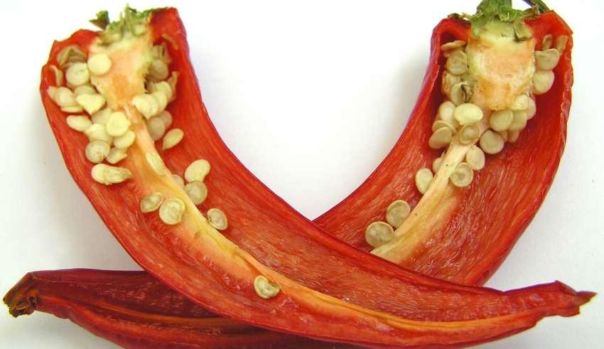 Der Artikel beschreibt die gesunde Wirkung von Chili.